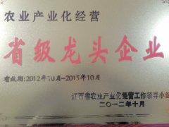 省级龙头企业荣誉证书